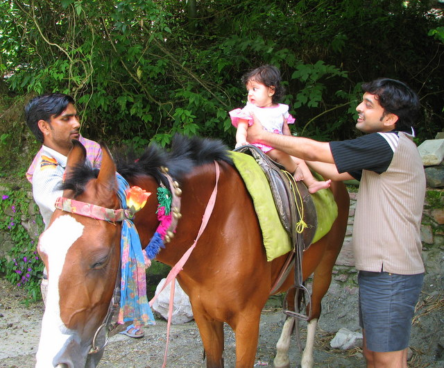 Horse Riding in Naukuchiatal