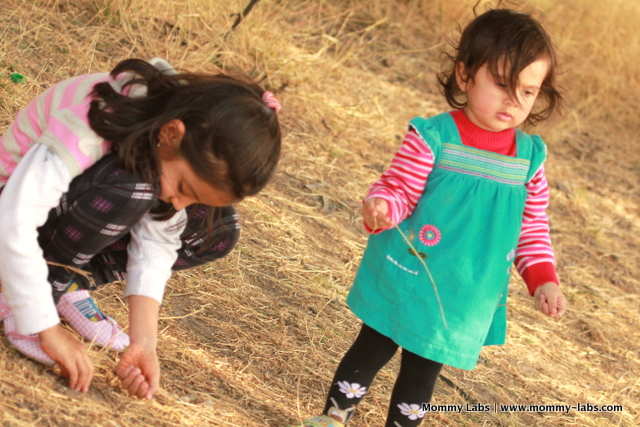 connecting with nature for young children