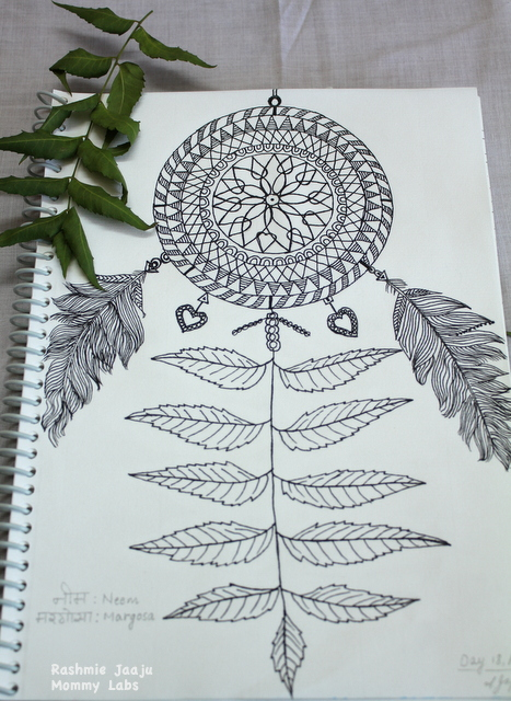 Dream Catcher Zentangle Feather Leaf Art