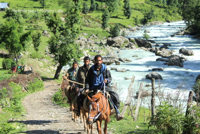 horse men of Aru Valley kashmir