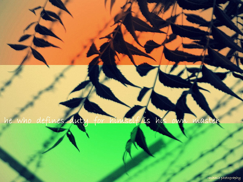 15th august indian tricolour