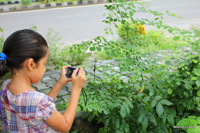 kids photographing nature