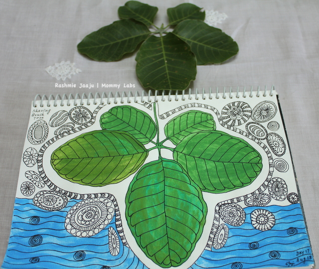 leaf art nature journaling watercolor zentangle