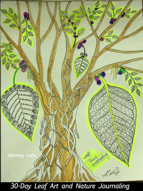 leaf art_nature journaling_study_30-day challenge