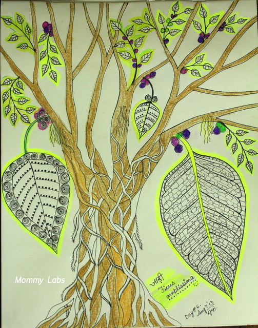 leaf art_nature_journaling_jadi_ficus amplissima_india