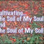 Cultivating the Soil of My Soul and the Soul of My Soil